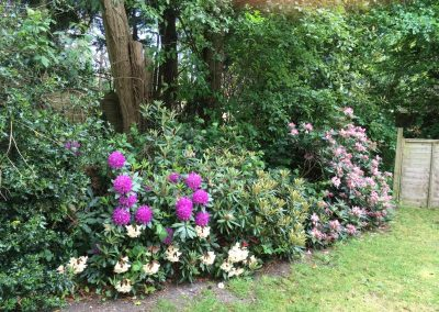 Petherton Cottage Grounds & Gardens